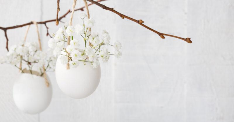卵の中に咲く白い花
