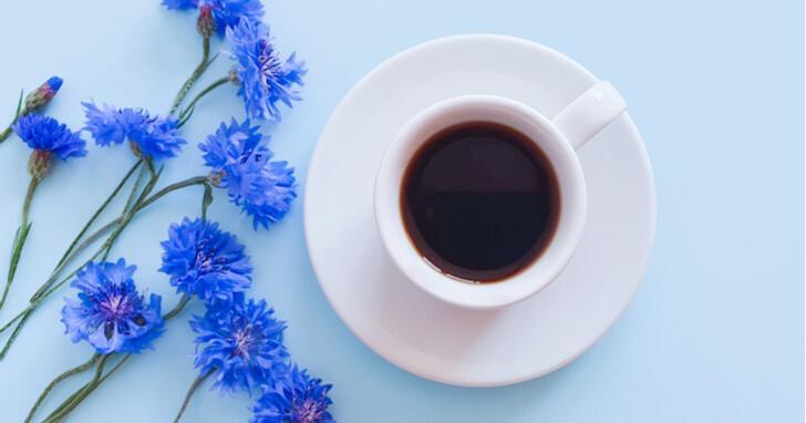 ホッと一息つける、コーヒー・紅茶のプレゼント