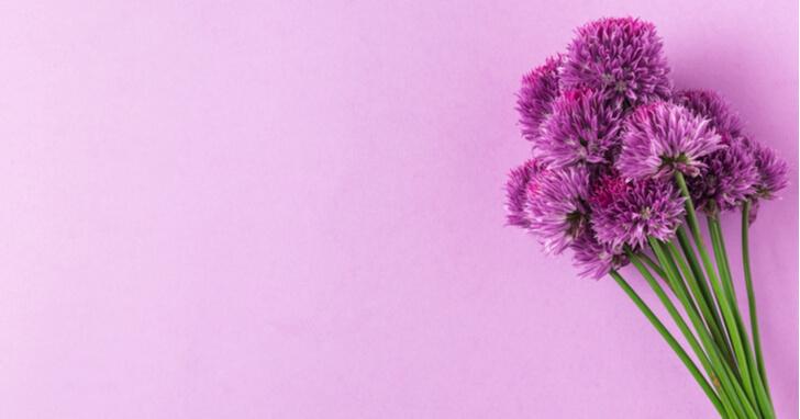 定番ギフトで誕生日を祝う、「花」をプレゼント